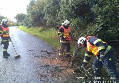 30. 10. 2018 Odstranění stromu, silnice I/43