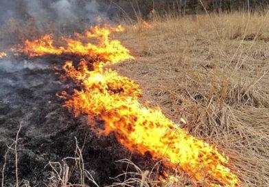 Požár trávy Milonice 1. 5. 2021